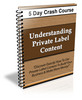 Thumbnail Understanding PLR content - PLR ebook