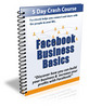 Thumbnail Facebook Business Basics with PLR
