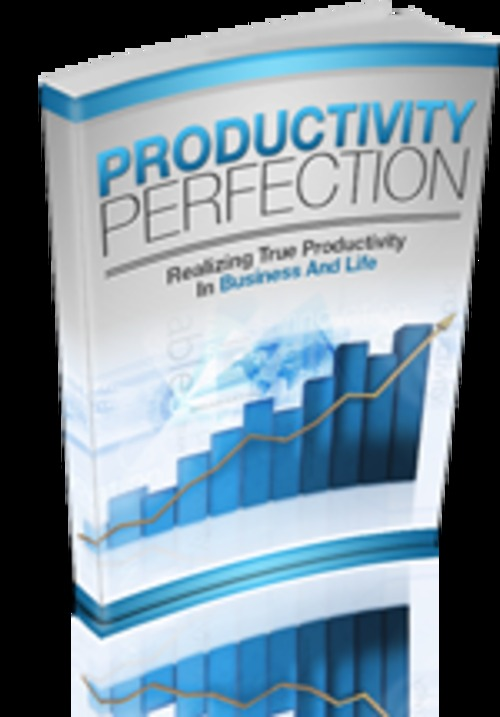 Product picture Productivity Perfection with MRR