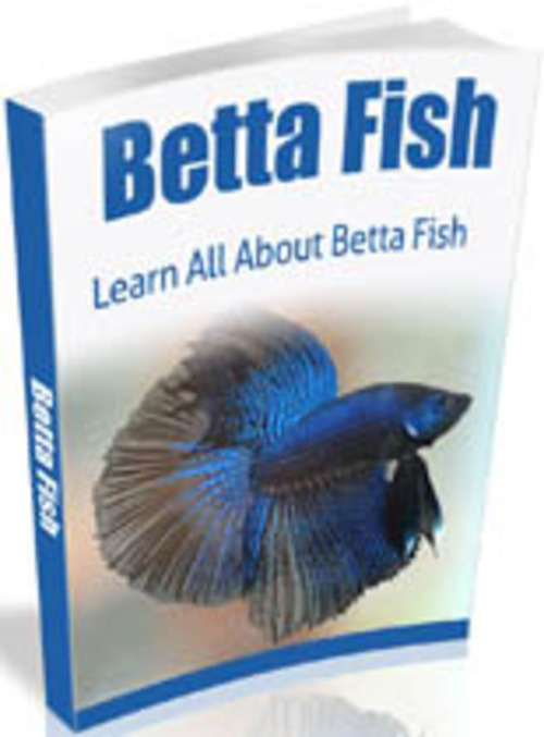 Product picture Beta Fish with MRR